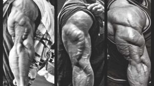 تمارين الترايسبس – 10 من اقوى التمارين لتقوية وتضخيم عضلة التراي
