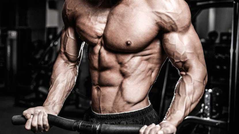 طريقة بناء العضلات – الدليل الشامل للتمارين الفعالة والتغذية السليمة