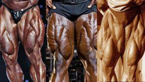 أفضل تمارين الرجل – 11 تمرين لتقوية وتضخيم الأرجل والسمانة بالصور