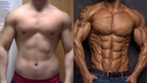 حقيقة تحول العضلات الى دهون عند الابتعاد عن التدريب